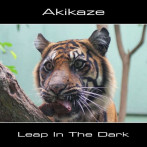 Akikaze | Leap in the Dark